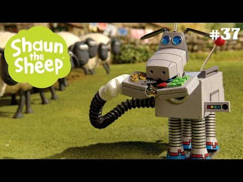 Chó chăn cừu rô bốt - Những Chú Cừu Thông Minh