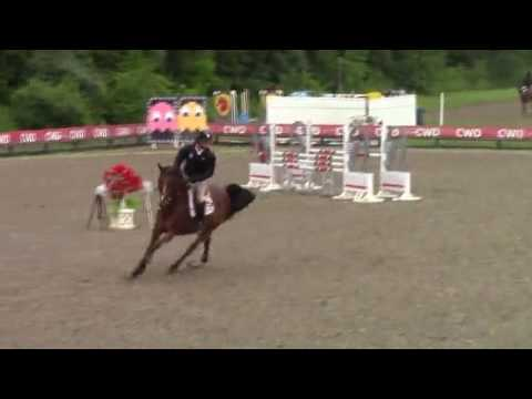 Video of Togo Rouge ridden by Peter Leone from ShowNet!
