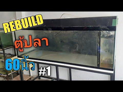 ปี3 |EP.67| REBUILD ตู้ปลา60นิ้วมือสอง ตอนที่1