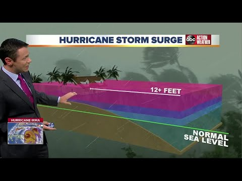 Greg Dee talks about storm surges in Tampa Bay