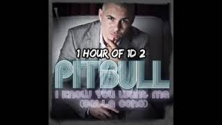 Pitbull - I Know You Want Me (Calle Ocho) 1 HOUR