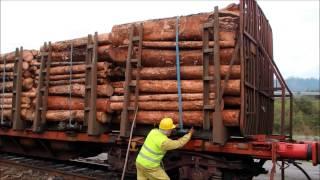 Transporte de madera entre Galicia  Portugal por Comsa Rail Transport
