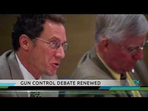 Local lawmakers weigh in on gun control