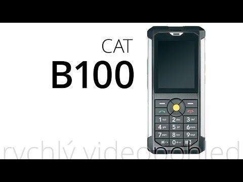 CAT B100 (rychlý videopohled)