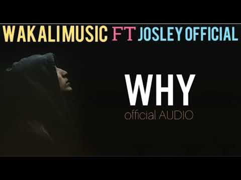 Josley Feat Wakali Music WHY (Official Music Audio )