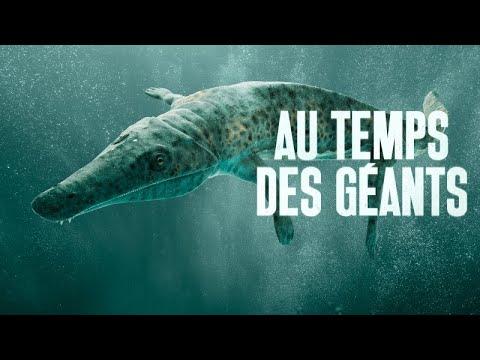 Download les 10 PLUS GRANDS ANIMAUX ayant VÉCU SUR TERRE |Documentaire Préhistoire
