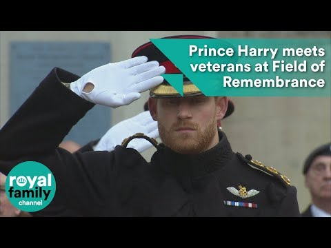 Prince Harry meets veterans at Field of Remembrance