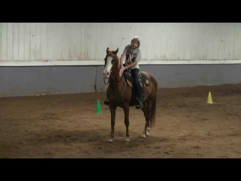 Bobbi & Chance  Cantering With Confidence