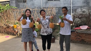 40元买5个菠萝,儿媳做菠萝炒饭,炖一锅银耳汤,全家人吃撑了