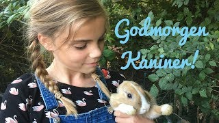 En morgen med mine kaniner l Olivias Verden