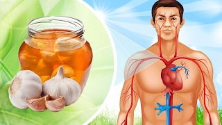 The REAL Health Benefits of Garlic and Honey