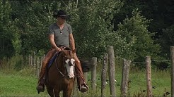 Wissensmix: Was macht ein Cowboy?