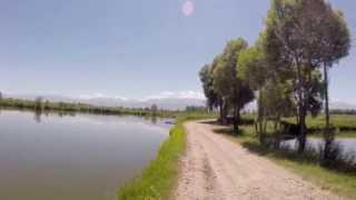 Кыргызстан, Токмок - Заказник (Заповедник)