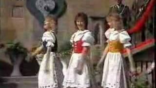 Lustige Musikanten in Prag - Moldaufinken Herz Schmerz Polka