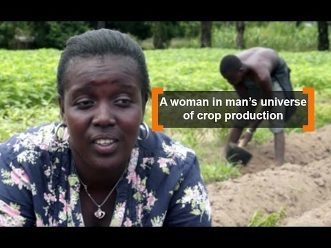 Benin: A woman in man's universe of crop production