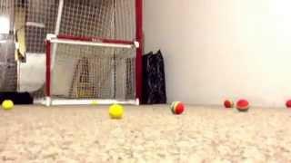Knee hockey arena