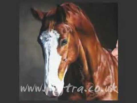 Speed Painting Horse Portrait In Pastel Billy Youtube