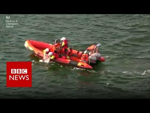 Stranded dog rescued from sea off Scottish coast - BBC News