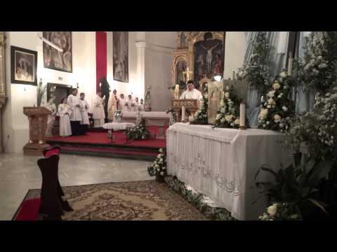 Hvalospjev Uskrsnoj svijeći - Exsultet - Sisačka katedrala 2014.