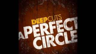 A Perfect Circle - Sleeping Beauty (Acoustic, live from Philadelphia)