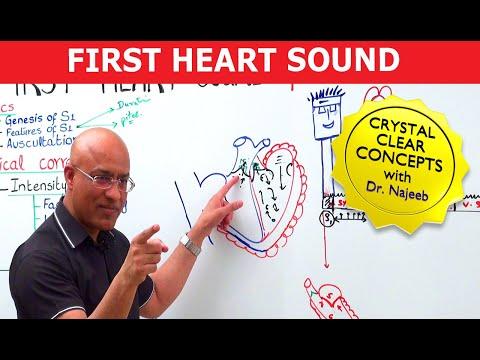 Mastering S1 - Heart Sounds & Murmurs
