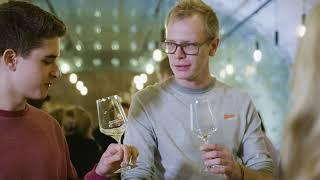 WIFI-Sommelierausbildungen: Die WIFI-Wein-Welt