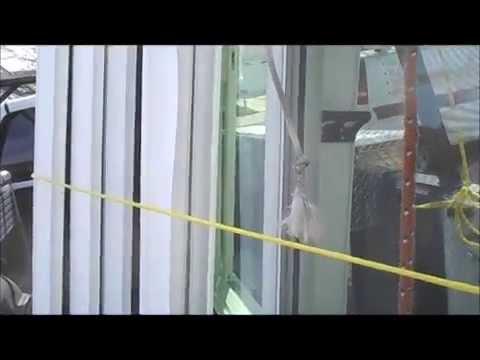 Window Retrofit In San Diego - 619-850-4794