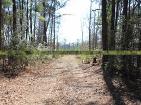 SC Acreage: Jamestown Timber Land