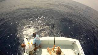 SUNDOWNER Sport Fishing Hawaii Episode 5