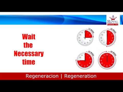 DPF Regeneration - Royal Express Inc
