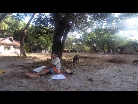 Wildlands Studies, Thailand 2014