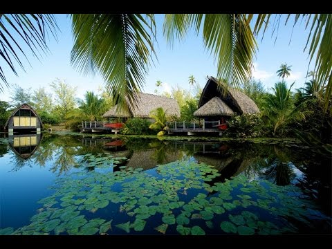 Traditional Polynesian Home with Modern Comforts in Fare, French Polynesia