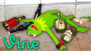 13 Drunk Kermit the Frog Memes that never made it to Vine