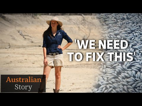Mass Fish Kill: What Next For The Darling River Community | Australian Story