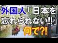海外「日本に心を奪われた」 日本の観光資源の奥深さが外国人を魅了!すごい日本に対する海外の反応は?!