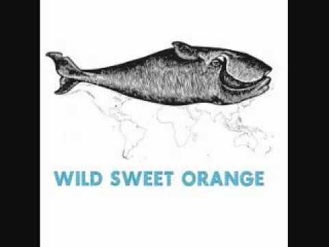 Wild Sweet Orange-Tilt (Acoustic)
