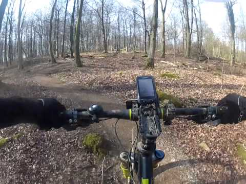Dalby Forest Red Route gates 25-32 April 2015