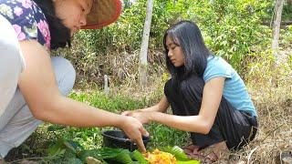Suku Dayak    Gadis Dayak Panen Dan Masak Jamur Merah