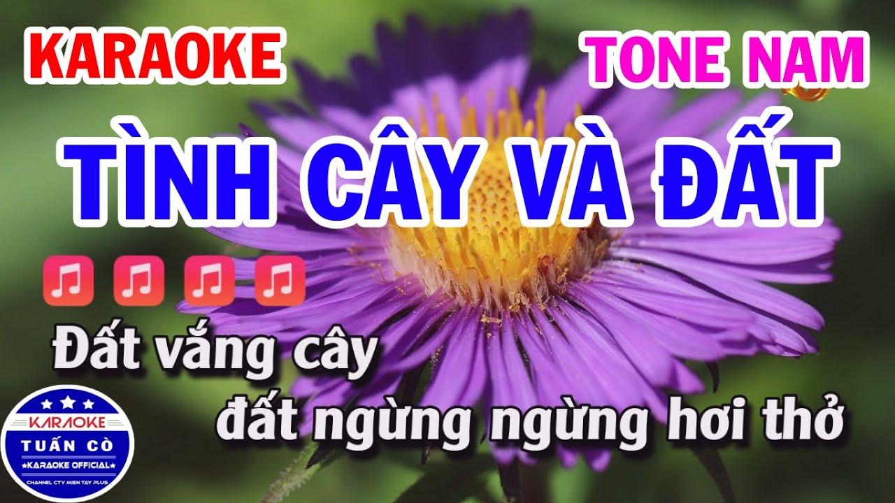 Karaoke Tình Cây Và Đất Tone Nam Nhạc Sống