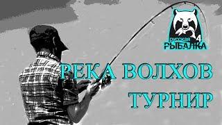 Русская рыбалка 4 река Волхов Турнир
