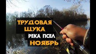Трудовая рыбалка на реке Псел в ноябре!