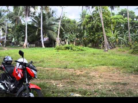 Pinamungajan Residential Lot on Sale