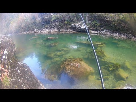 Fishing For Hucho/huchen&Fly Fishing For Giant Rainbow Trout|Kupa River 2019