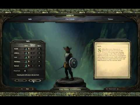 Repeat Pillars of Eternity [3 03 Beta] Solo Priest PotD - Nalrend