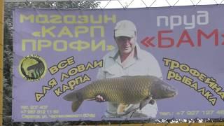 Рибалка на ставку БАМ , п. Злітна , Енгельський район .