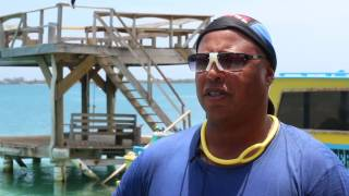 Why Go To Utila Dive Centre For Training? Testimonial Videos From Former Students