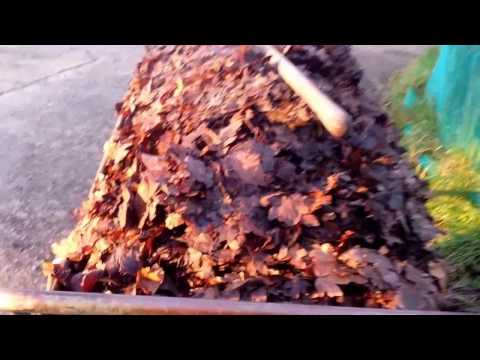 How To Use Leaf Mould In No Dig Organic Gardening