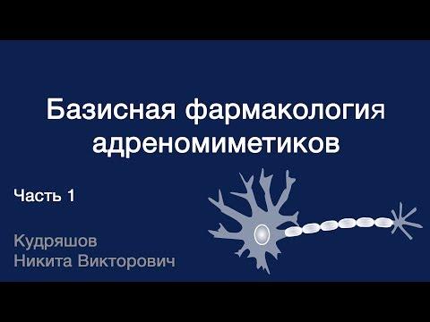 Базисная фармакология адреномиметиков. Часть 1