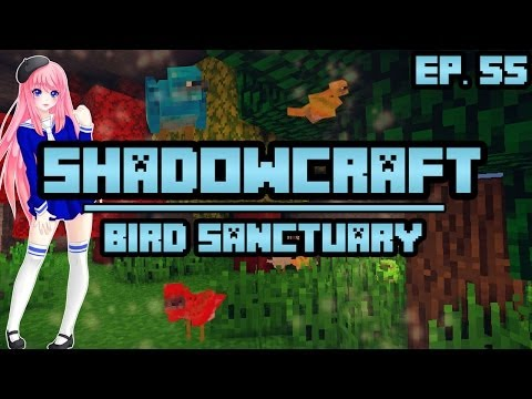 Bird Sanctuary | ShadowCraft | Ep. 55