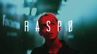 Shawn Mendes - In My Blood (Raspo Remix) Video